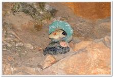 Lamprechtshöhle-0022