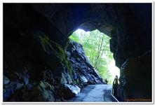Lamprechtshöhle-0051