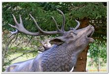 Parc Animalier de Ferleiten-0002