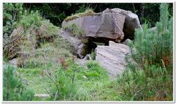 Parc Animalier de Ferleiten-0062