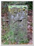 Rando Mt Ste-Odile-Stèle-crash AR-0021