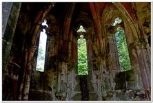 Ruines du Monastère d'Allerheiligen-0018