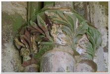 Ruines du Monastère d'Allerheiligen-0020