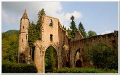 Ruines du Monastère d'Allerheiligen-0049