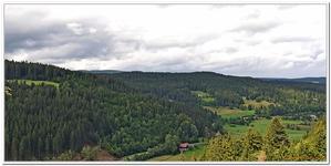 Divers nature Baden-Wurtemberg-0001