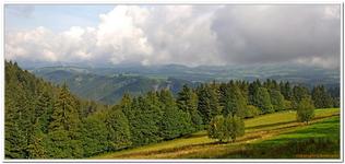 Divers nature Baden-Wurtemberg-0004