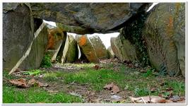Allée couverte et Menhir de la Vallée-0004