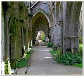 Abbaye de Beauport-0017