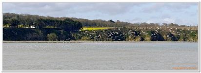 Baie de St-Brieuc-0015