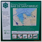 Baie de St-Brieuc-0031