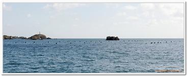Autour de l'Ile de Bréhat-0020