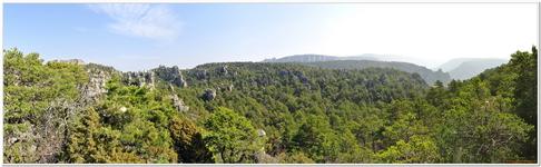 Montpellier-le-Vieux-0055_180