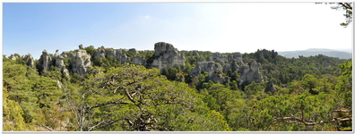 Montpellier-le-Vieux-0056_180