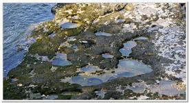 Les marmites de Pont-de-Poitte-0004
