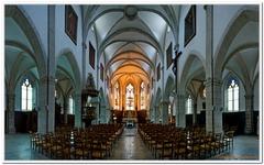 Église Saint-Martin de Baume-les-Dames-0005
