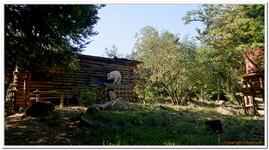 Zoo Amnéville-0074