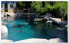 Zoo Amnéville-0099