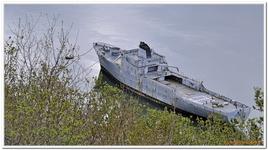 Cimetière bateaux à Landévennec-0008