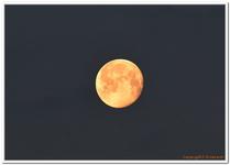 La Lune-0015