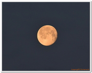 La Lune-0016