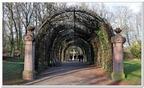 Parc de l'Orangerie-0022