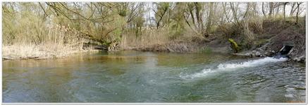 Delta de la Sauer Avril 2018-0033_180
