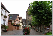 Bergheim-0015