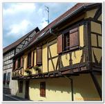 Dambach la ville-0008