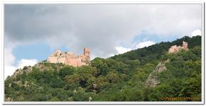 Les 3 Châteaux de Ribeauvillé-0002