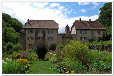 Jardin Médiéval de Murbach-0010