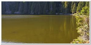 Le Lac Vert-0007