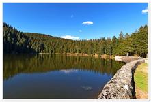 Le Lac Vert-0004