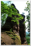 Le sentier des Roches à Lembach-0008