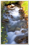 Les Ruisseaux de Coton-0002