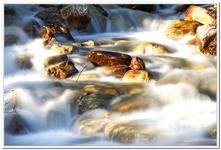 Les Ruisseaux de Coton-0006