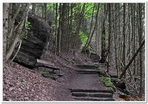 Mont Ste-Odile-0022