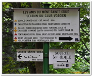 Mont Ste-Odile-0023