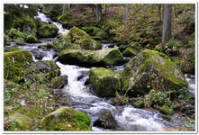 La Cascade de Triberg-0002