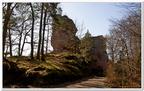 Der Altdahn-Grafendahn-Tannstein-0116
