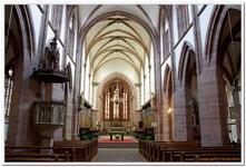 Collégiale Saint-Florent à Niederhaslasch-0043