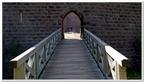 Le château de Wangenbourg-0011