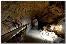 Lamprechtshöhle-0006