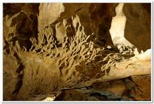 Lamprechtshöhle-0023