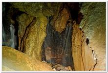 Lamprechtshöhle-0030