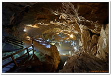 Lamprechtshöhle-0032