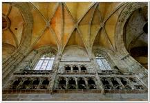 Cathédrale Saint-Tugdual-0019