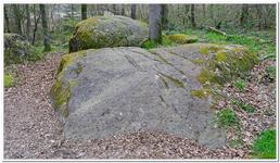 Menhir de Guihalon-0003