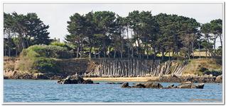 Autour de l'Ile de Bréhat-0103