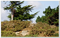 Autour de l'Ile de Bréhat-0110