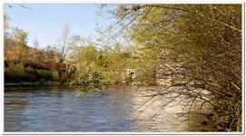 Barrage de Blye-0003